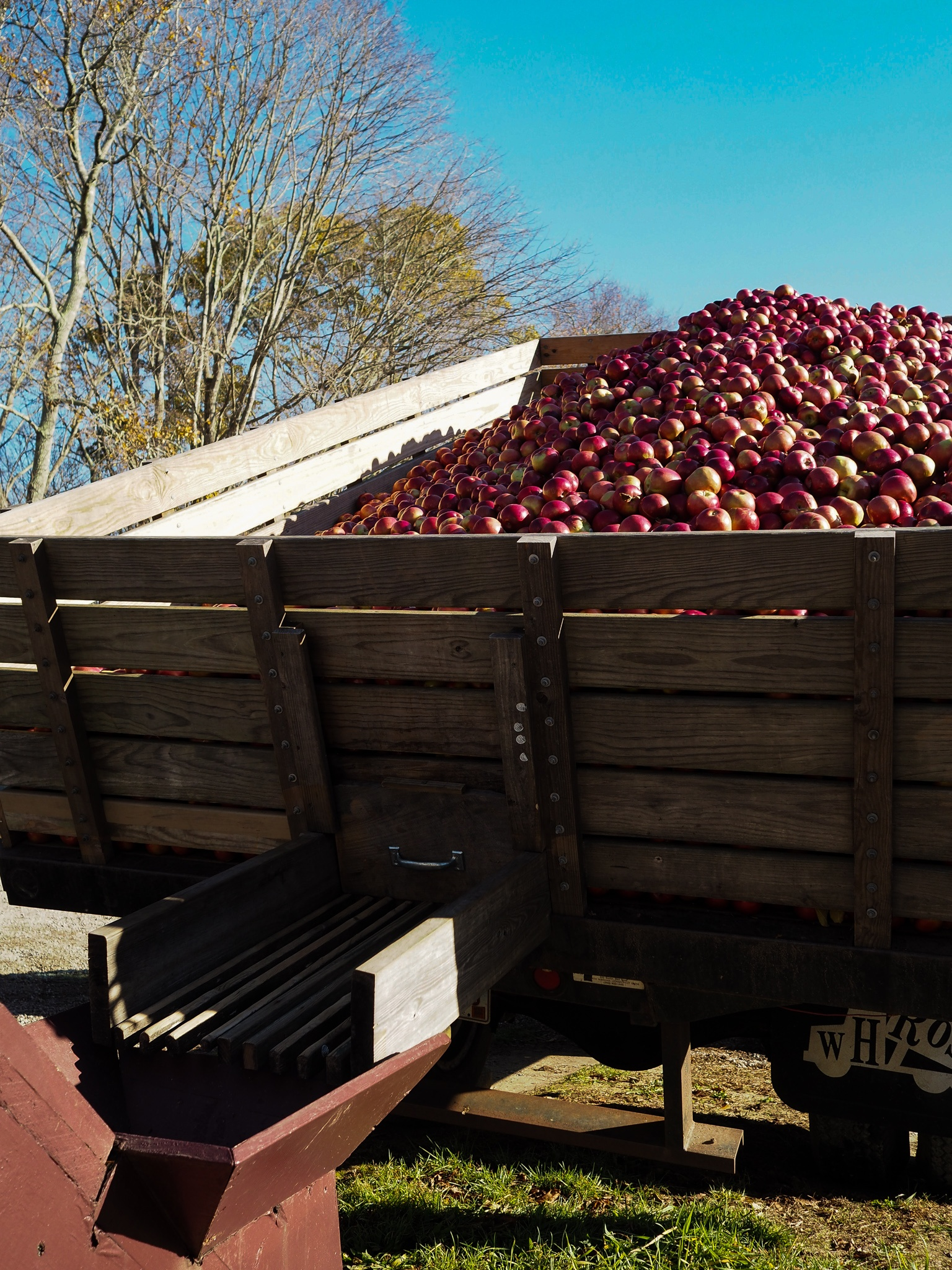 B. F. Clydes Cider Mill. A place to stop in and grab delicious apple cider, apple cider donuts, and apple wine, and hard cider. A must stop place in New England for the fall season.